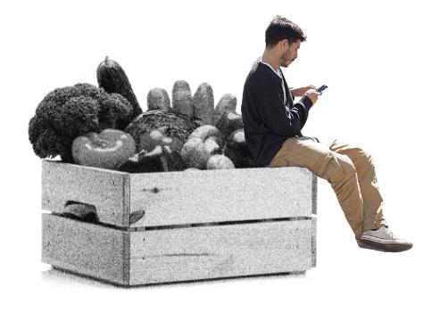 Digitale Ernährungsplattformen
